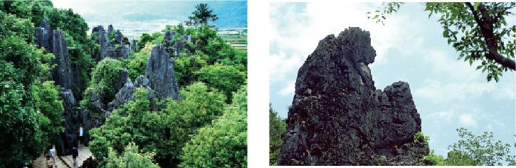 国家级重点风景名胜区,国家4a级旅游区,国家地质公园福建石林位于距图片